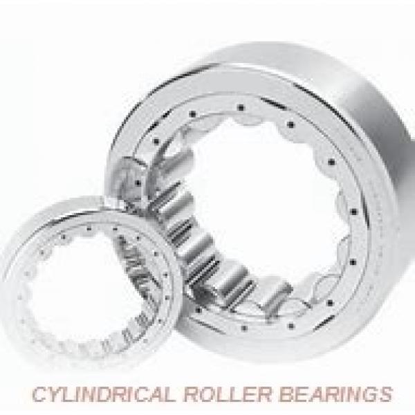 ISO NU2219EMA CYLINDRICAL ROLLER BEARINGS ONE-ROW METRIC ISO SERIES #2 image